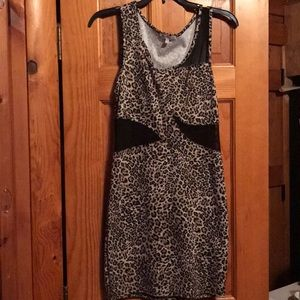 Tight Leopard and Mesh Dress